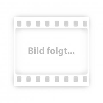 Dachbox Hapro Traxer 6.6 weiß
